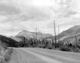 Alaska Highway, Mile 441.7 Southeast