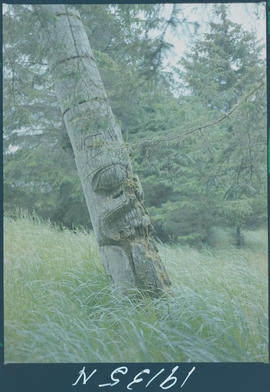 Totem Pole, Skedans Queen Charlotte Islands