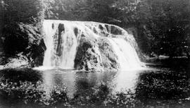 """Sarita Falls on Sarita River, location near Alberni, Vancouver Island""."