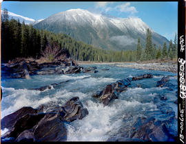 Kootenay River In Kootenay National Park