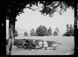 Cricket At Brockton Point Oval, Stanley Park, Vancouver