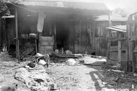 Extension; Chinese Miner's Home Looted During The Lockout Of Dunsmuir Coal Miners.