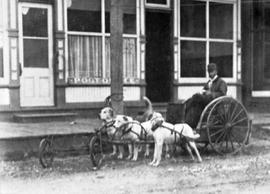 A man in a dogcart outside the post office at Skagway.
