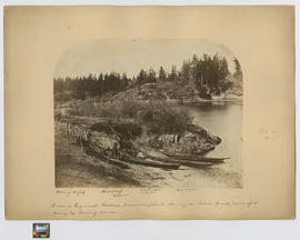 [Indicated by arrows]: Herrings drying.  Hut of mats.  Indian man.  Indian woman in blanket.  Three canoes.  A cove in Esquimalt Harbour, Vancouver Island, shewing [sic] an Indian family encamped during the herring season.