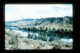 Thompson River Near Kamloops