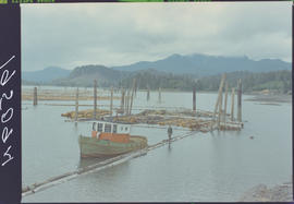 Tug and log booms, Queen Charlotte City, Queen Charlotte Islands