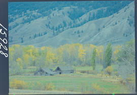 Abandoned Farm Near Lillooet