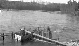 Indian fish trap on the Tachie River.