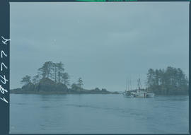Dixon Entrance Near Langara Island, Queen Charlotte Islands