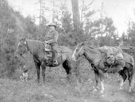Mr. Robert Stevenson with his horses Milt, and Bill; dog unidentified.