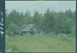 Abandoned Building On A Farm Near Tlell, Queen Charlotte Islands