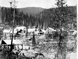 The new town on Musquito [Mosquito] Creek. Cariboo.
