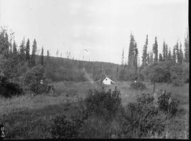 Camp in meadow on the Driftwood-Omineca Trail.