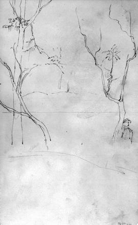 [Beginning Of Sketch With Trees]