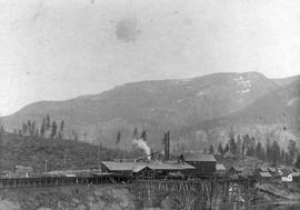 Billings Sawmill and workers' houses at Billings, BC, near Cascade; Billings no longer extant.