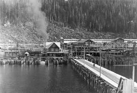 Ocean Falls; first of three bridges between Ocean Falls townsite and Pacific Mills plant