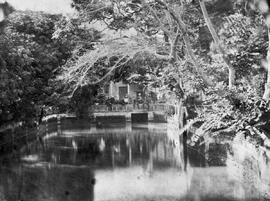[Canton, China] 9.  Gives part of the house where I stood when I photographed No. 8, near wh. spo...