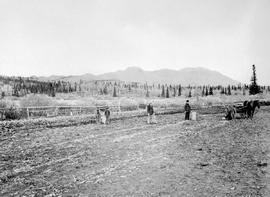 Farming In Atlin