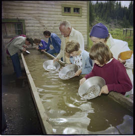 Gold Panning In Barkerville