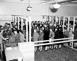 A sale of stockings at the Hudson's Bay Store, Victoria; women lined up according to foot size.