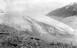 Swannell survey; unidentified glacier.