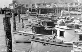 Richmond; BC Canneries; launches in harbour.