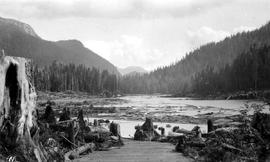 Ocean Falls; plank walkway to Link Lake, before the dam flooded the valley; from file 1911-1915