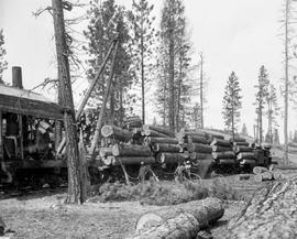 Forest Service; steam-loading yellow pine.
