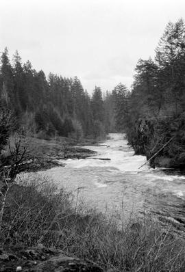 Rapids on Sproat River.