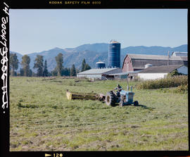 Farming Near Chilliwack, Harvesting