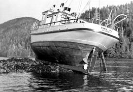 BC Police motor launch 15, aground at Port Essington.