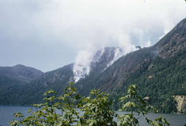 Forest Fire Near Cameron Lake