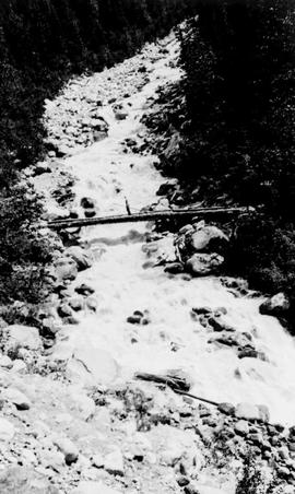 Swannell Survey; a log used as a bridge across a river.