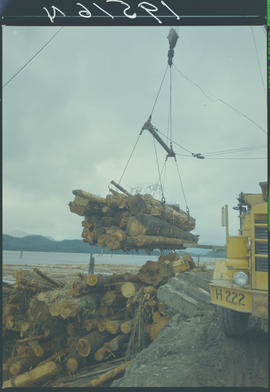 MacMillan Bloedel Logging Operation, Queen Charlotte City Queen Charlotte Islands