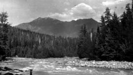 Rapids on the Kimsquit River.