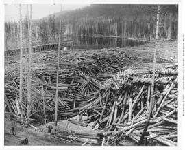 Chase. Adams River Lumber Co. Sorting Pond