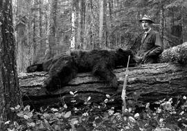 C.J. Smith and the 300 pound bear he shot on the plateau trail.