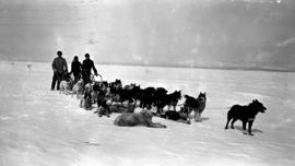 Three people and their dogsled.