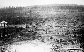 """Land clearing, stumps pulled and grubbed for burning"""