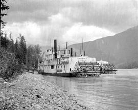 Sternwheelers in a river; the Omineca is closest to shore.