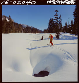 Cross-country skiing, Mount Seymour, Vancouver