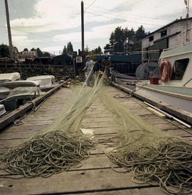 Fishermen With Nets Port Alberni