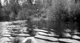 """Showing moose on Pack River""; Pacific Great Eastern railway lands survey of resources;..."