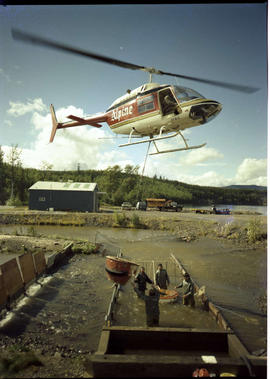 Airlift Of Salmon Pinkut River