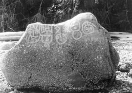 A petroglyph at the north end of Bainbridge Island, Puget Sound; Box 6, File 12.