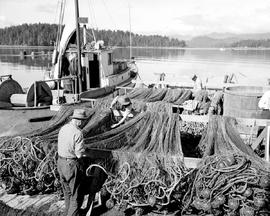 Fishermen Mending Dogfish Nets, Queen Charlotte City.
