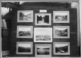 "Nine mounted photographs on an easel identified as ""A.C. Hirschfeld & Co. Photographers&..."