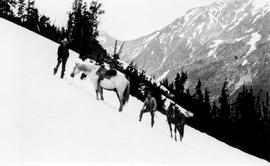 Swannell Survey; two men and their horses part way up a mountain.