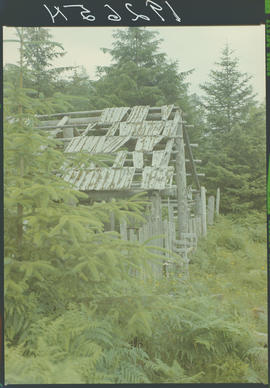 Abandoned Building,  Tlell Queen Charlotte Islands