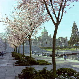 The lower walkway on the causeway in Victoria's Inner Harbour.